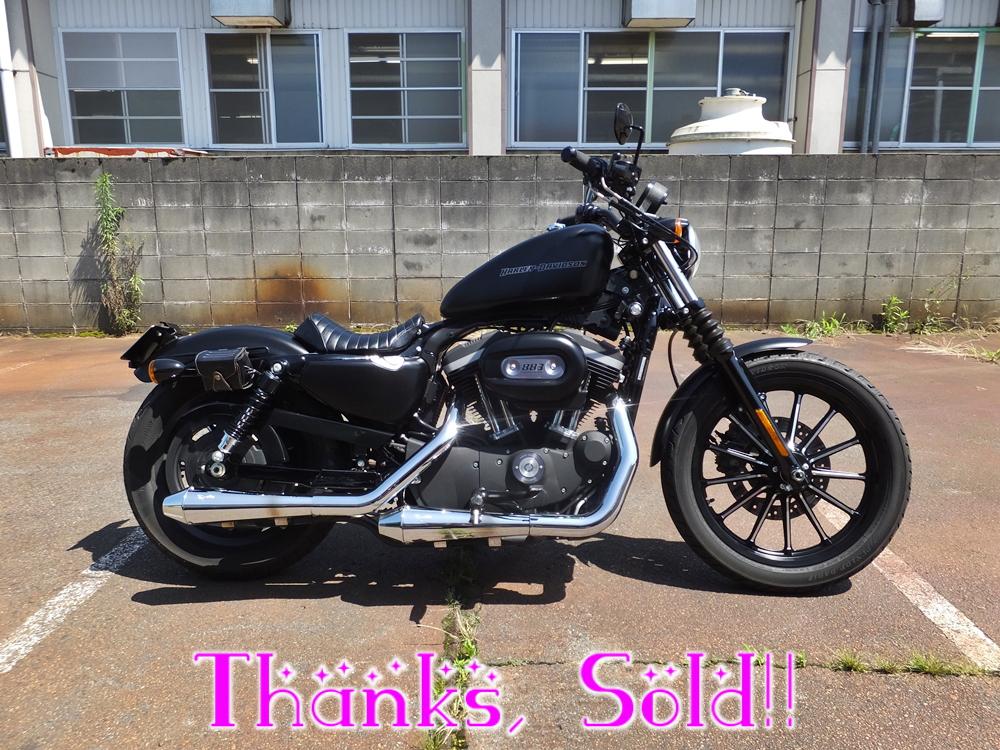 2010XL883N sold