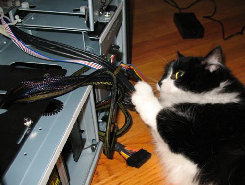 cat PC