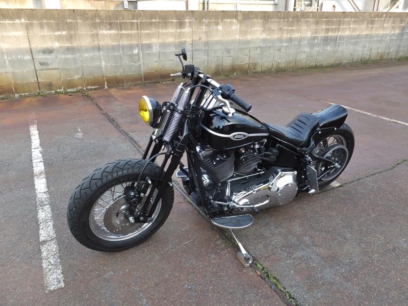 2005FLSTSC custom5